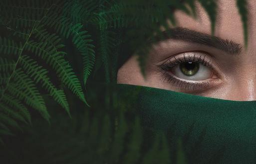 Фото Девушка в зеленой парандже выглядывает из-за листьев папоротника, фотограф Evgeny Loza