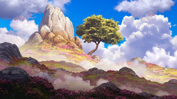 Фото Единственное дерево, растущее у камня, by arcipello