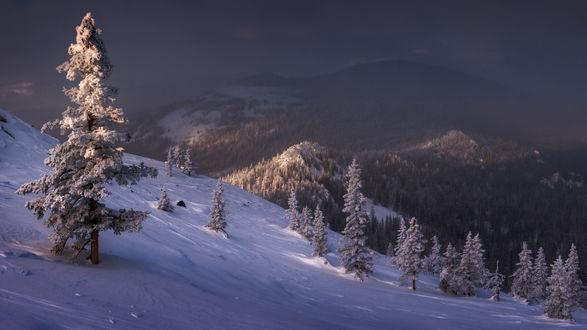 Фото Зимний пейзаж природы в горах, фотограф marateaman