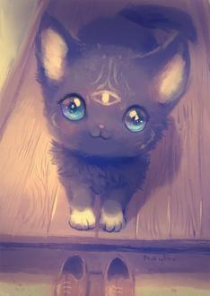 Фото Черный котенок, у которого на мордочке знак третьего глаза