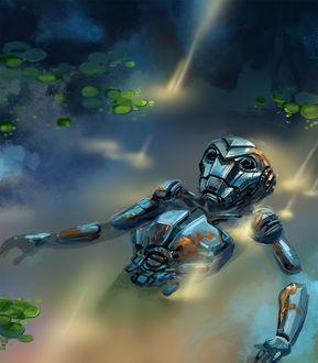 Фото Робот лежит в воде рядом с кувшинками, atr by akemyler