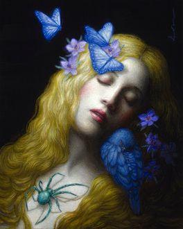 Фото Девушка - блондинка с цветами и бабочками на волосах, пауком на теле, птицей на плече, by Chie Yoshi