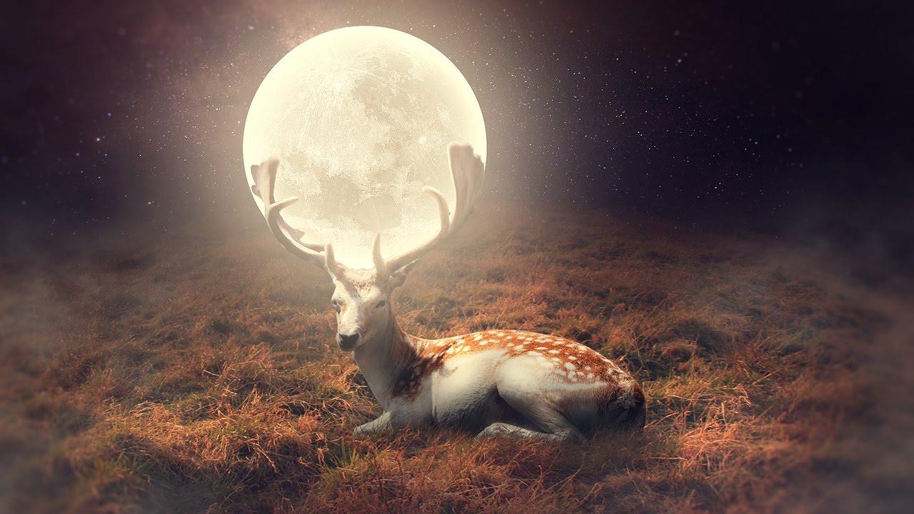 Фото Полная луна на рогах оленя