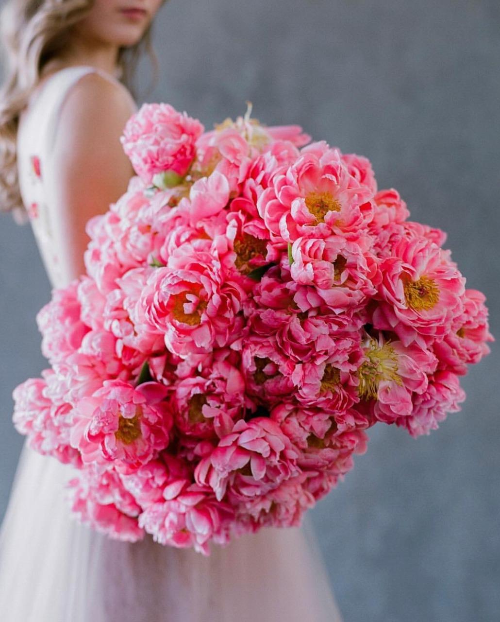 Фото Девушка с букетом розовых пионов