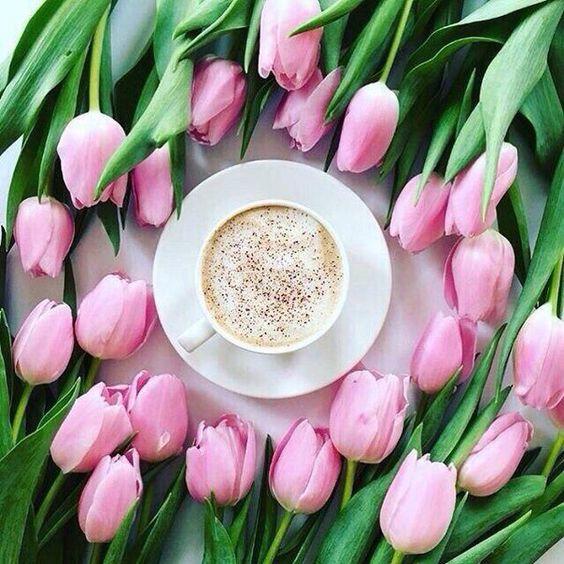 Фото Чашка кофе на блюдце в окружении розовых тюльпанов