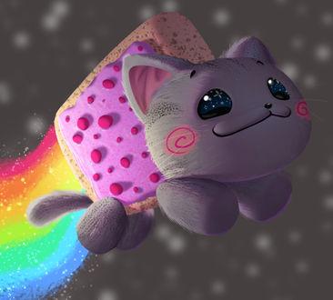 Фото Nyan Cat / Нянкот- визуально-музыкальный мем Ютуба, на фоне космоса, by Dylean