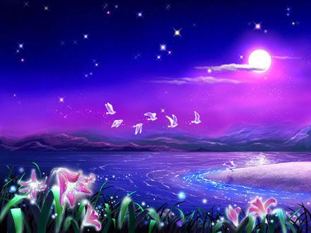 Фото На переднем плане цветут колокольчики под облачным небом с луной