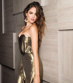 Фото Актриса Эйза Гонзалес в золотом платье позирует у стены