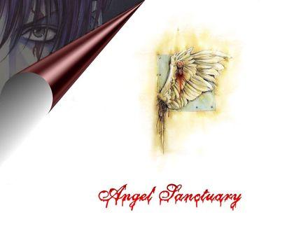 Фото Оторванное крыло, прибитое гвоздем к стене из аниме Angel Sanctuary / Обитель Ангела, art by Kaori Yuki