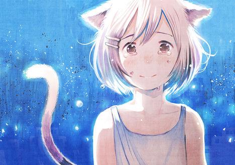 Фото Неко-девушка, на глазах которой слезы, аниме Owarimonogatari / Финальные истории