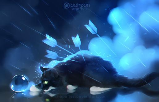 Фото Раненая стрелами кошка трогает лапой пузырь, by Apofiss