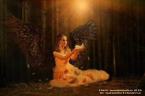 Фото Милая девочка ангел сидя на земле в лесу держит в руках голубя, освещенная ярким светом. Фото манипуляция 2018 Маргариты Кобзаревой