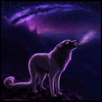 Фото Волк, стоящий на вершине скалы, by FelonDog
