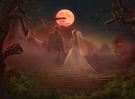 Фото Влюбленные стоят на фоне полной луны, by Dani-Owergoor