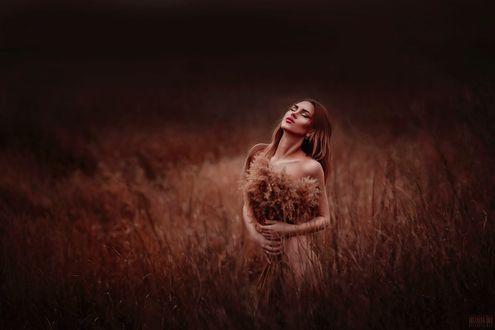 Фото Девушка стоит в поле, фотограф Светлана Беляева