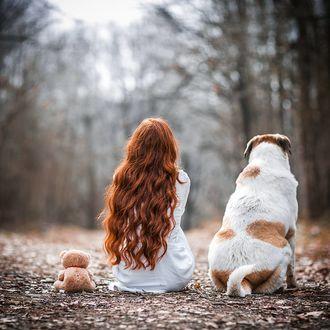 Фото Девушка с рыжими длинными волосами, пес и игрушечный мишка на земле, вид сзади, by selinisit