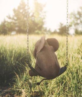 Фото Слоненок на качели