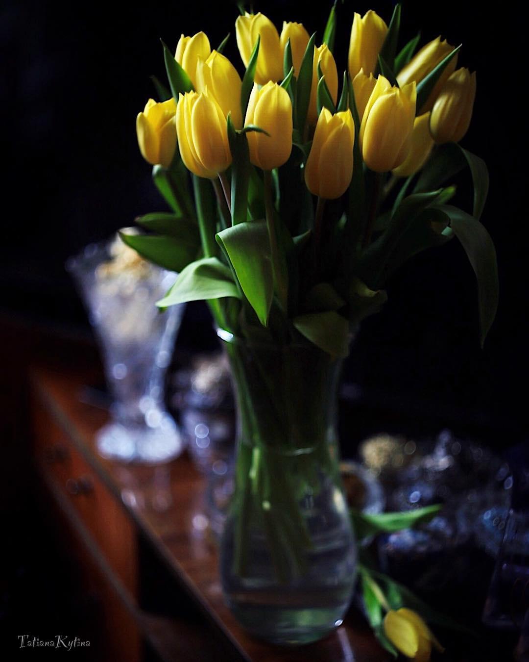 для пола картинки тюльпаны красивые букеты в вазе внимание уделите подсветке