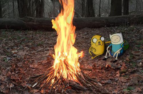 Фото Джейк пес / Jake the Dog и Финн / Finn из мультсериала Время Приключений / Adventure Time греются у костра, сидя на земле, усыпанной осенними листьями