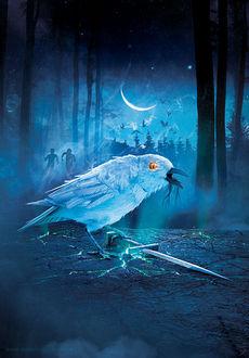 Фото Огромная птица придерживает лапой сверкающий меч