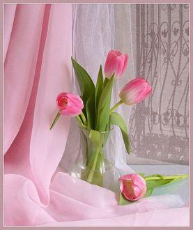 Фото Розовые тюльпаны в вазе с водой на фоне белой и розовой ткани, с текстурой нарисованного окна