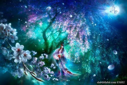 Фото Девушка с веером под цветущим деревом глицинии, на переднем плане цветущая ветка сакуры, by Шу Мизогучи / Shu Mizoguchi