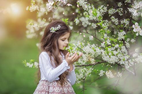Фото Девочка рядом с цветущим деревом, фотограф Марина Петра