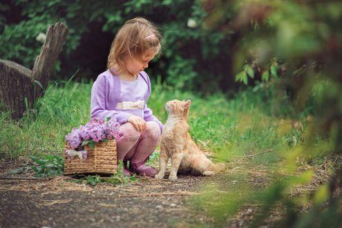 Фото Девочка сидит на лесной тропинке с рыжей кошкой и корзинкой сирени
