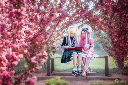 Фото Две девочки с цветными волосами на скамье среди цветущих деревьев сакуры, фотограф Ярослава Громова