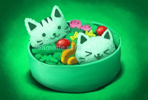 Фото Коробочка с бенто, где из риса сделаны кошачьи мордочки, by leamatte