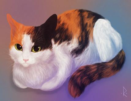 Фото Трехцветная рисованная кошка, by mellinae