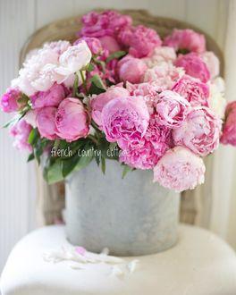 Фото Розовые пионы в ведерке на столе, by frenchcountrycottage