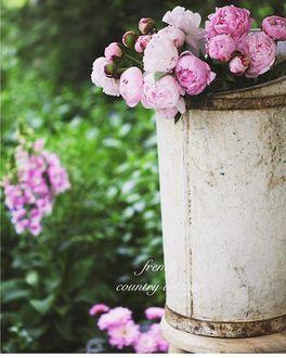 Фото Розовые пионы в ведре, by frenchcountrycottage