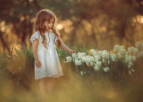 Фото Девочка стоит перед белыми тюльпанами, by Катрин Белоцерковская
