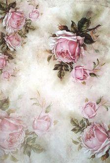 Фото Розовые розы на обоях