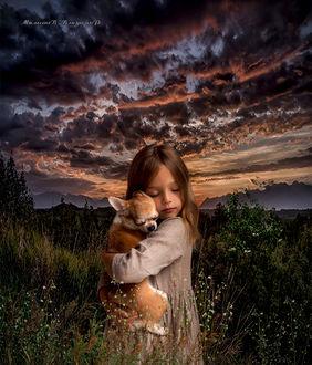 Фото Девочка на закате, держит на руках собачку