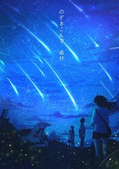 Фото Школьники любуются звездопадом