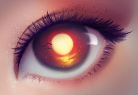 Фото Карий глаз девушки с птицами в нем, by thedreamyarts