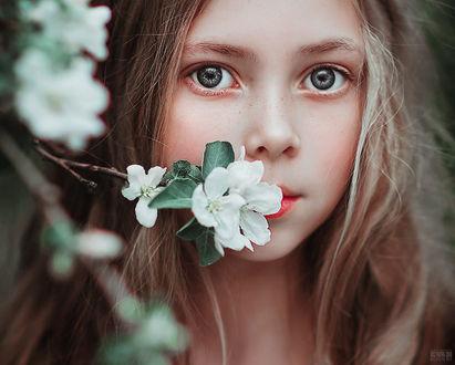 Фото Девочка с серыми глазами, с весенней веточкой у лица, фотограф Светлана Беляева