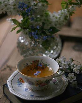 Фото Чашка чая на блюдце и весенние цветы в вазе и на столе