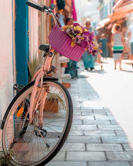 Фото Корзинка с цветами на велосипеде, стоящим у стены