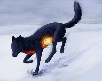 Фото Черный волк с огненной шерстью, by Wolflich