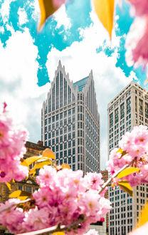 Фото Весна в Detroit / Детройте, by Hayden Scott