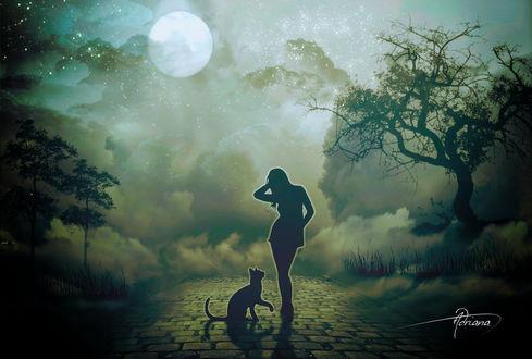 Фото Силуэт девушки и кошки, стоящих на фоне полной луны, by Adriana-Madrid