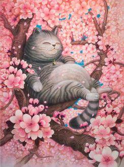 Фото Толстый кот на цветущей сакуре, by phoenix7472