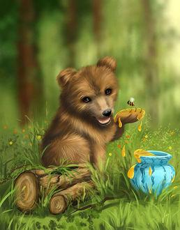 Фото Медведь сидит перед кувшином с медом. Художница Veronica Minozzi