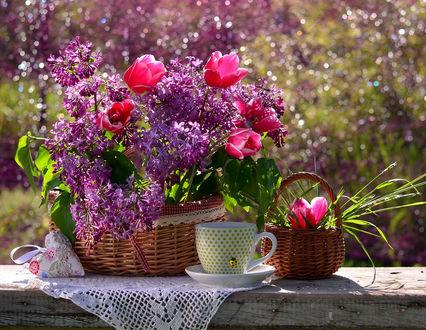 Фото Натюрморт из корзины с сиренью и розовыми тюльпанами, корзинки с тюльпанами, чашки с божьей коровкой на блюдце