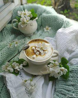 Фото Кофе в чашке с цветочком вишни на блюдце, by veraund