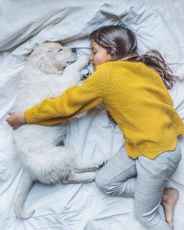 Фото Девочка обнимает свою собаку, оба спят на постели, by lumadeline