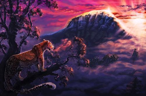 Фото Леопард на ветке дерева, by ARVEN92